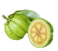 garcinia frugt ekstrakt
