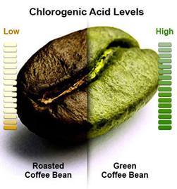 grøn kaffe